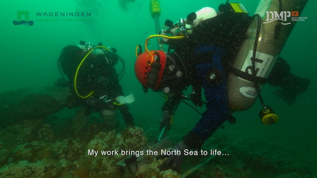 Scientific research in the North Sea
