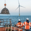 Oysters in a wind farm in the North Sea   © Udo van Dongen